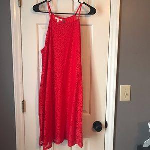 NWT Maurice's dress